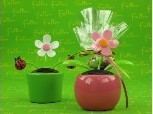 Pots de fleurs roses et anis avec dragées baptême