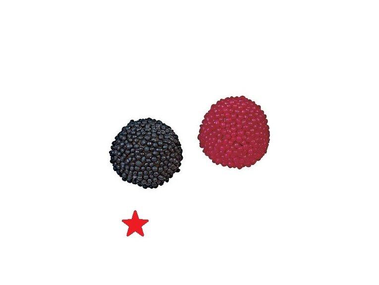 Mûre rouge & noire