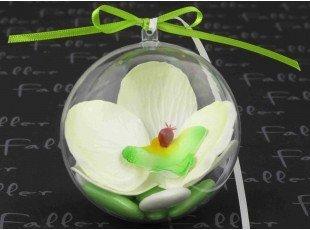 Orchidée anis dans boule plexi avec dragées